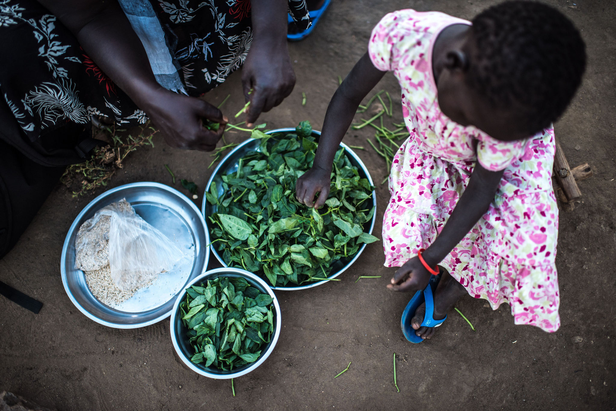 Beans and pea leaves grown by a refugee assisted by Caritas.